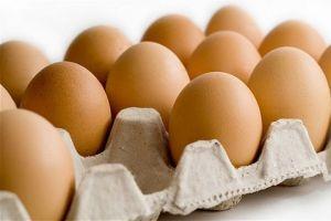 أسعار البيض تدهور دون التكلفة...والمربون يطالبون بتدخل الحكومة