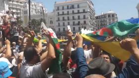 جزائريون يتحدون قائد الجيش ويرفعون رايات غير العلم الوطني (فيديو)