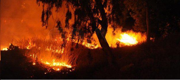 وفاة شخصين بحريق على مساحة 2 كم على طريق المتحلق الجنوبي