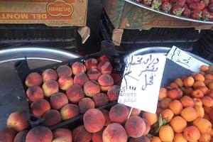 فواكه من انتاج بلدي ( شم ولا تدوق ) أسعارها بتكوي ... المشمش الشامي 3500 ليرة