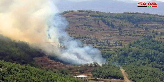 اندلاع حريق في أحراج صلنفة بريف اللاذقية