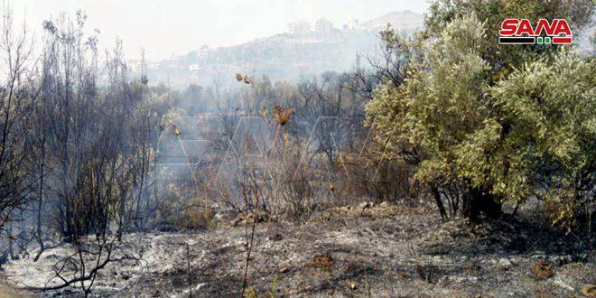 إخماد حريق اندلع في بساتين قرية الزويتينه بريف حمص