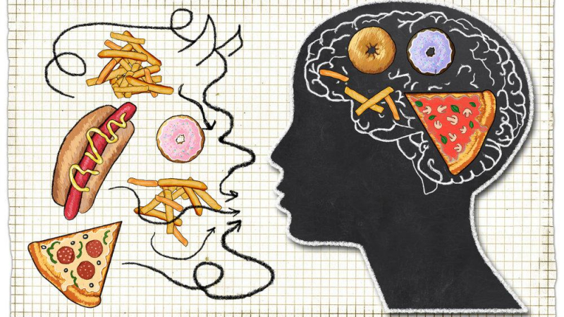 عشرة أنواع من الأطعمة تدمر الدماغ، احذرها! - الأطعمة التي قد تؤثر سلبًا في صحة الدماغ - الأطعمة المضرة التي تسبب اضطراب وظائف الدماغ