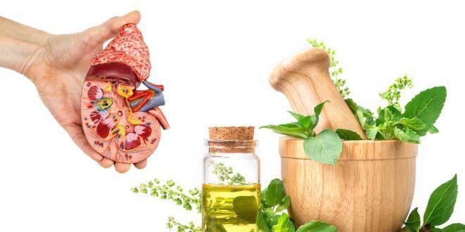 علاج حصوات الكلى بأعشاب وأطعمة طبيعية