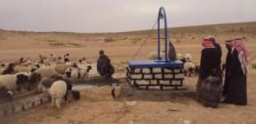 سوريا: إبادة قطيع من الغزلان