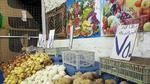 العراق يحظر استيراد 29 منتجا زراعيا وحيوانيا
