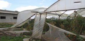 طرطوس.. العواصف المطرية توقع أضراراً كبيرة بالبيوت البلاستيكية في كفر سيتا