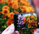 أشياء يمكن للكاميرا الخاصة بهاتفك القيام بها بخلاف التقاط صور السيلفي!