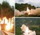 ما نوع الصاروخ الباليستي الذي أطلقته كوريا الشمالية من قطار؟ (فيديو)