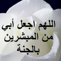 Saeed2212
