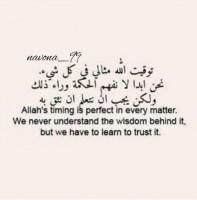 Ahmed4750